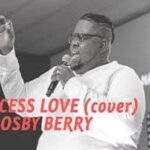 Excess Love (Cover) By Osby Berry (VIDEO & LYRICS)