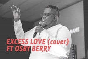 Excess Love Cover Osby Berry