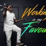 Florocka - Working in My Favour [MP3 and Lyrics]