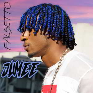 Falsetoo by JUMEE