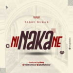 Tabby Bukar - Ni Naka Ne [MP3 and Lyrics]