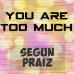 Segun Praiz - You Are Too Much [MP3 and Lyrics]