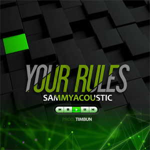 Your Rules By SammyAcoustic