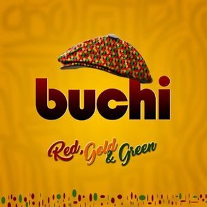 Download Why By Buchi
