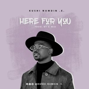 Download Here For You By Kushi Numdin E.