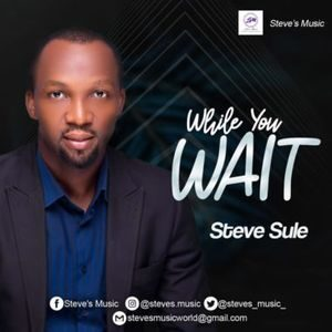 Download While You Wait By Steve Sule
