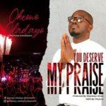 Oladayo Okeowo - You Deserve My Praise [MP3 Download]
