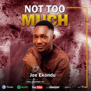 Download Not Too Much By Joe Ekondu